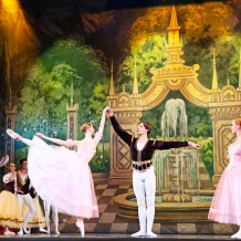 Classical Grand Ballet Swan Lake